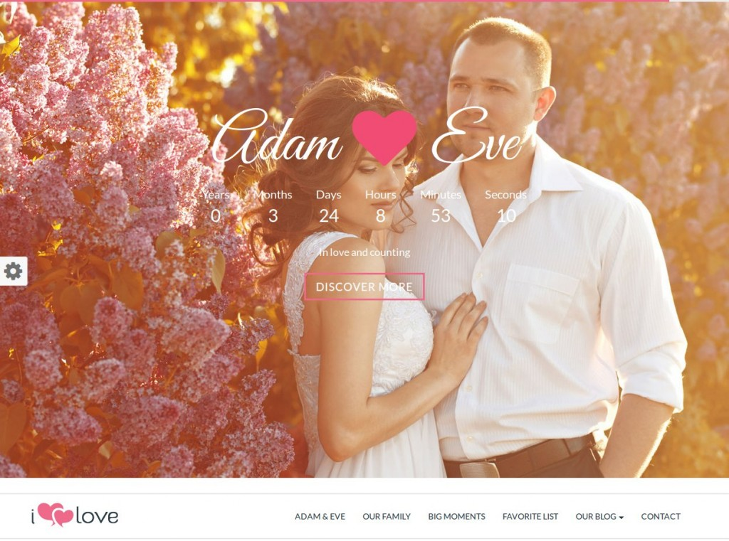 12-wordpress-theme-matrimonio