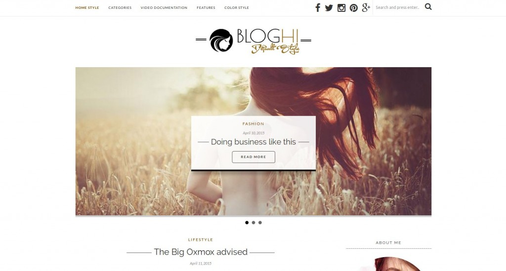 07-bloghi-theme-wordpress-french